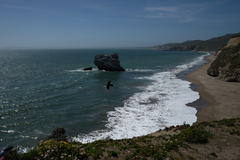 Point Reyes National Seashore - May 2014